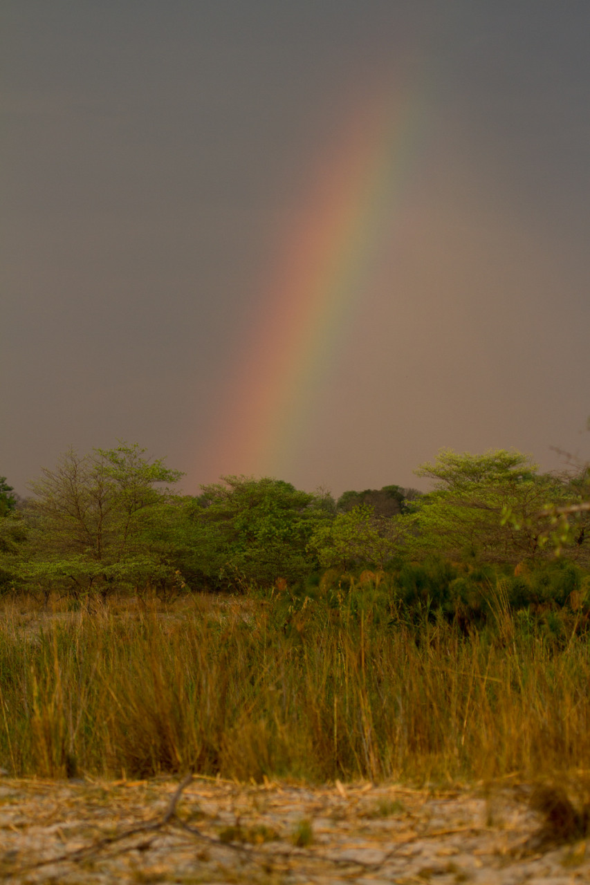 Rainbow. It didn't rain on our side of the river. Only in Angola.