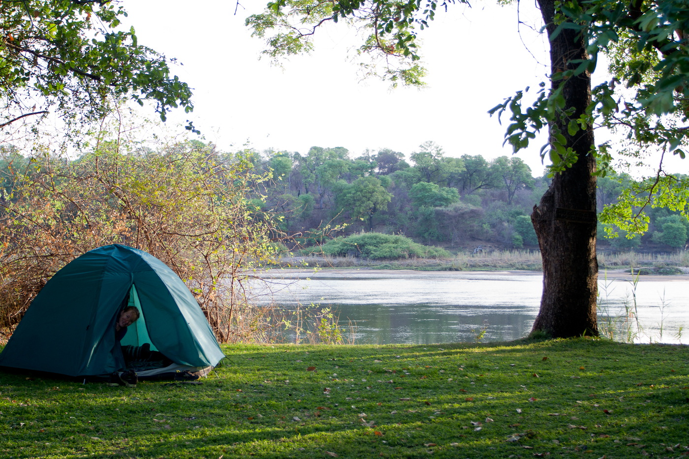 Our modest tent on the banks of the Okavango at 8AM