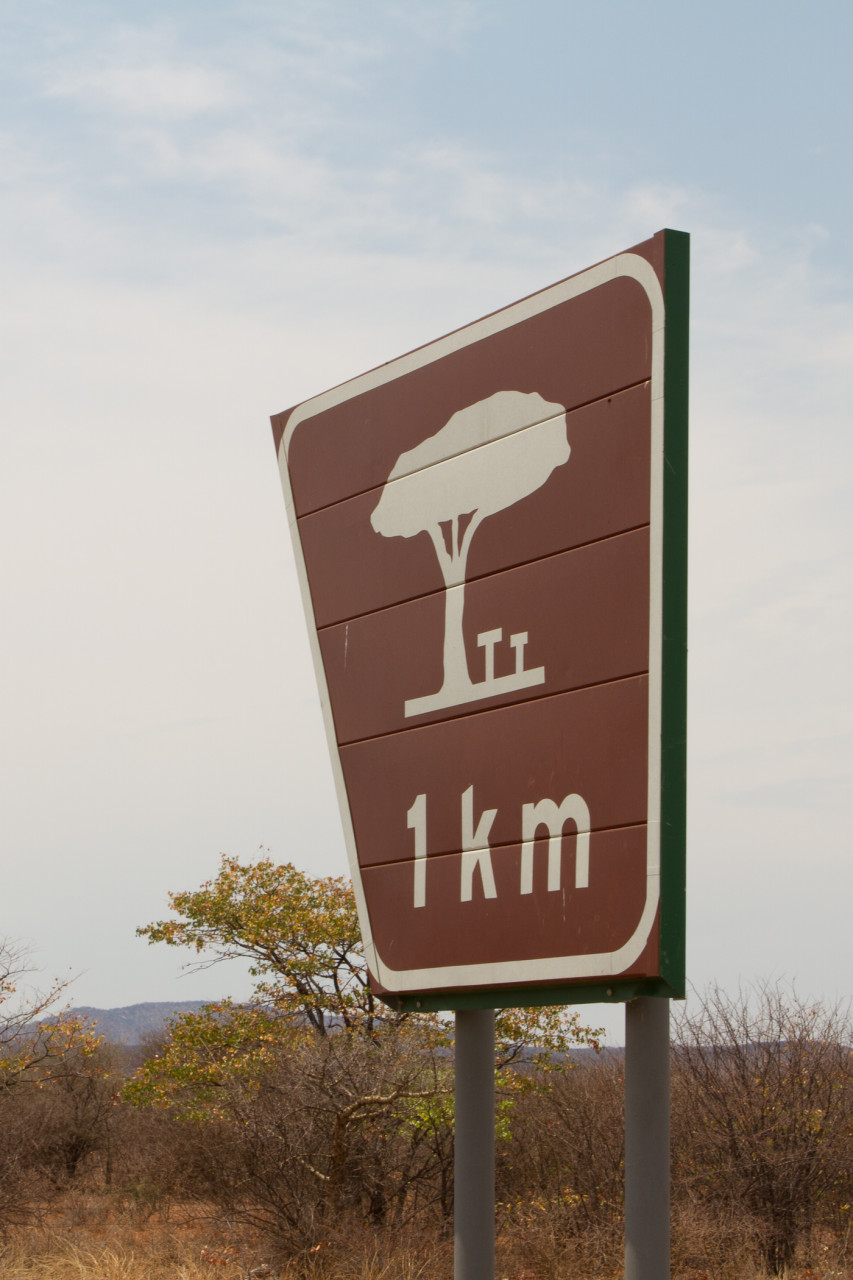 Signs for rest areas. Each stop featured a massive tree providing copious amounts of shade.