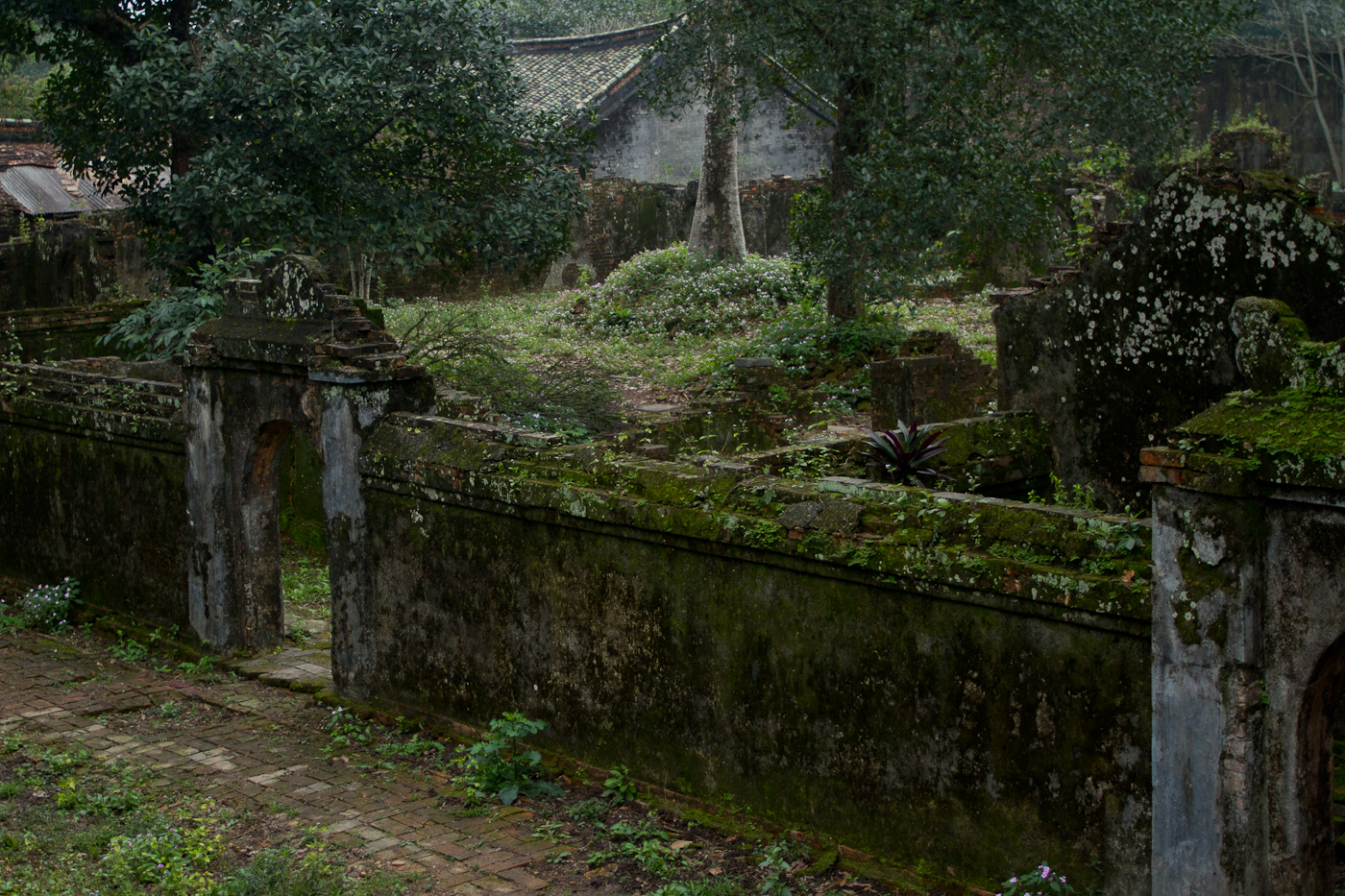 Overgrown ruins at the Tuc Doc Mausoleum.