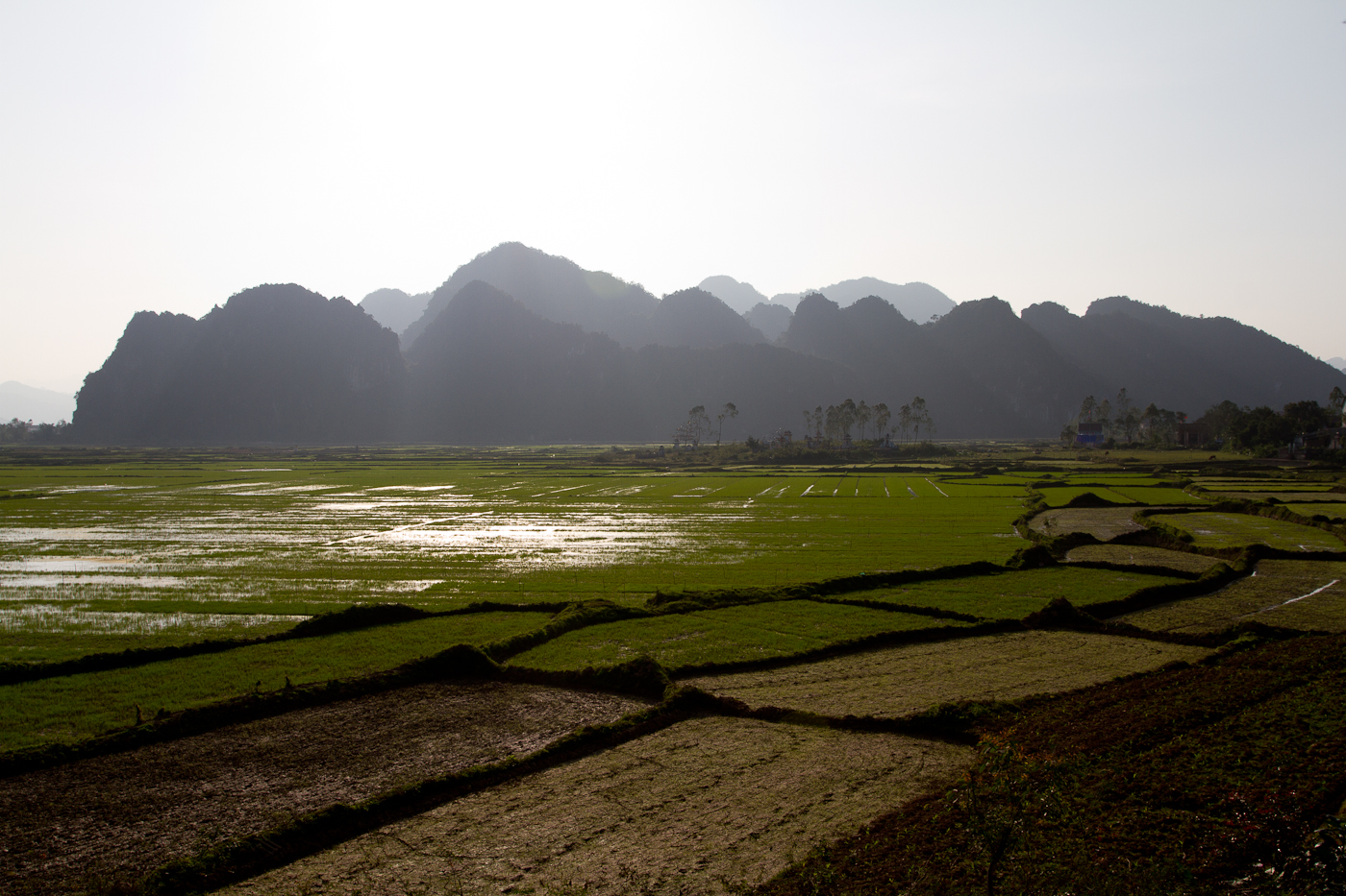 View across the rice paddies towards Phong Nha.