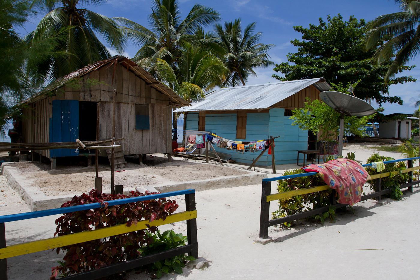 Sapokren Village is about 15km by motorbike from Waisai. It is a base to see the Wilson's and the Red Birds of Paradise.