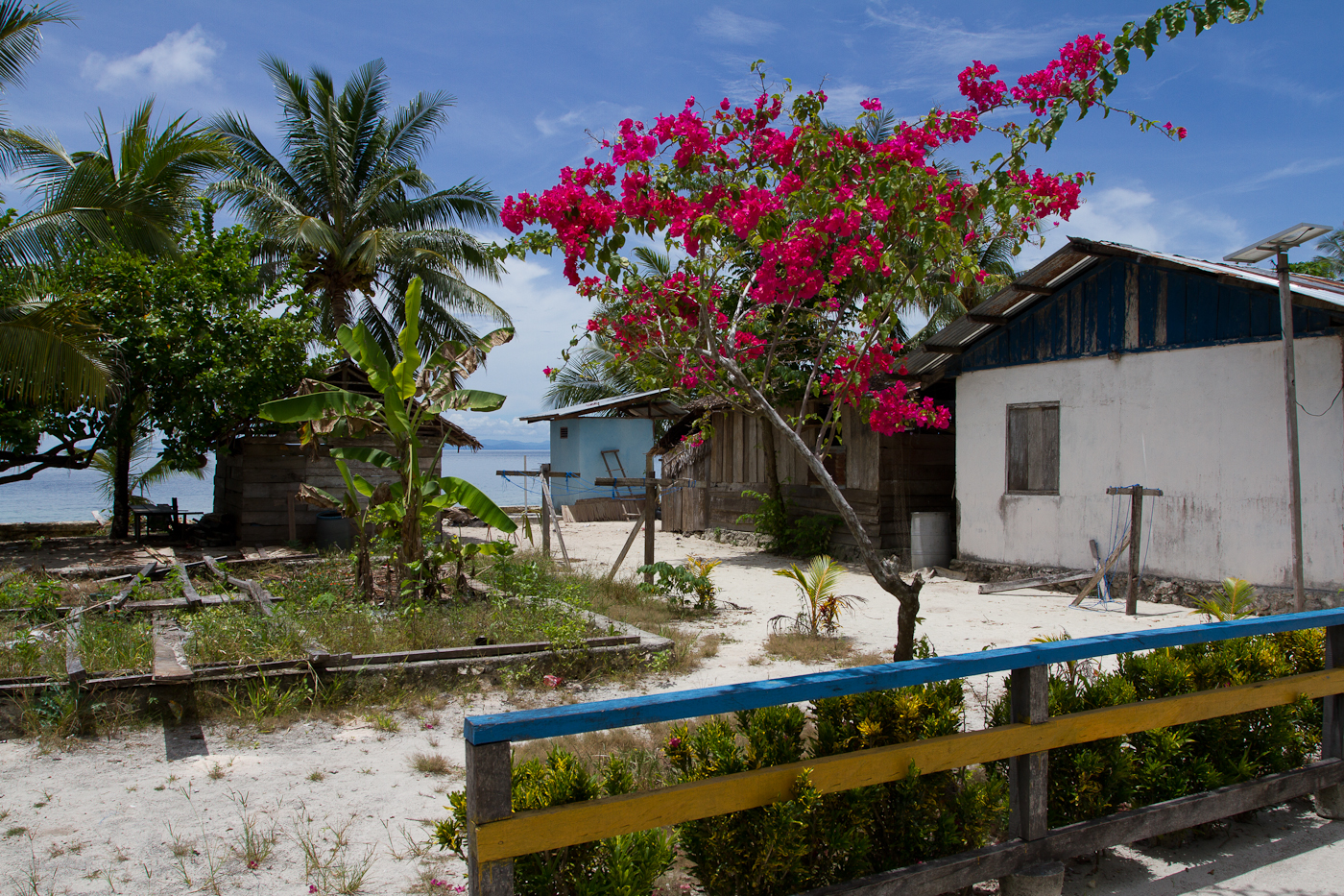 Houses in Sapokren village on the 'main island' of Waigeo.
