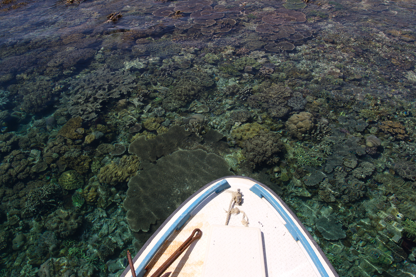 No the boat is not about to crash into the reef. The water is just incredibly clear!