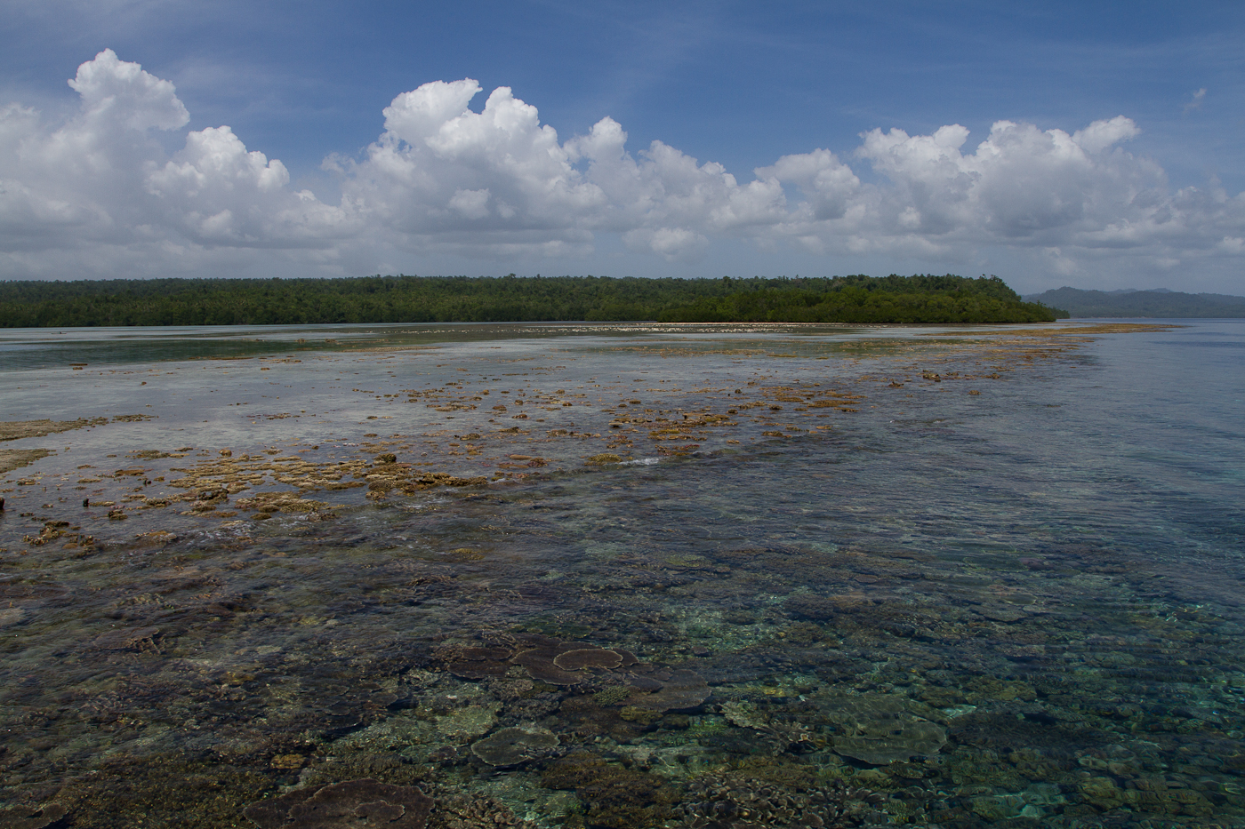 View over the reef near Weda Resort, Halmahera
