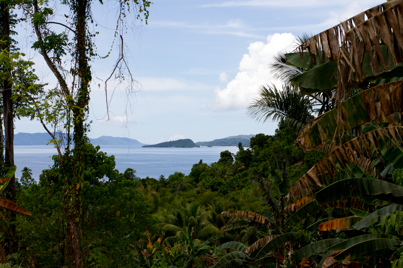 View over the bay towards Sapokren on Waigeo Island.