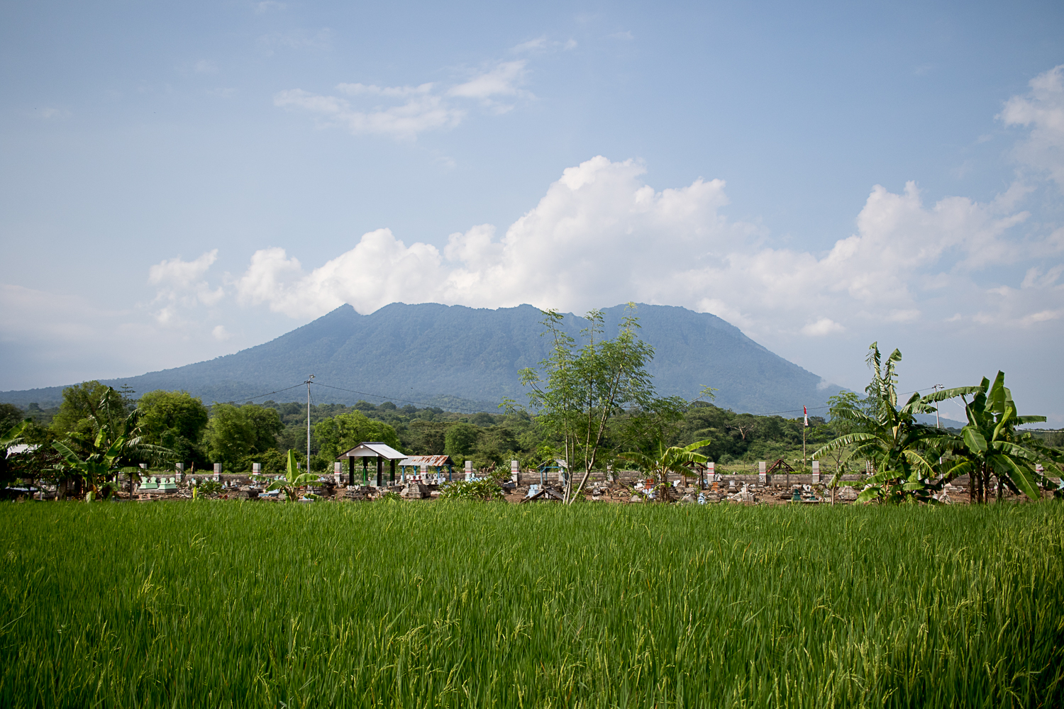 Cemetery on the outskirts of Baluran National Park