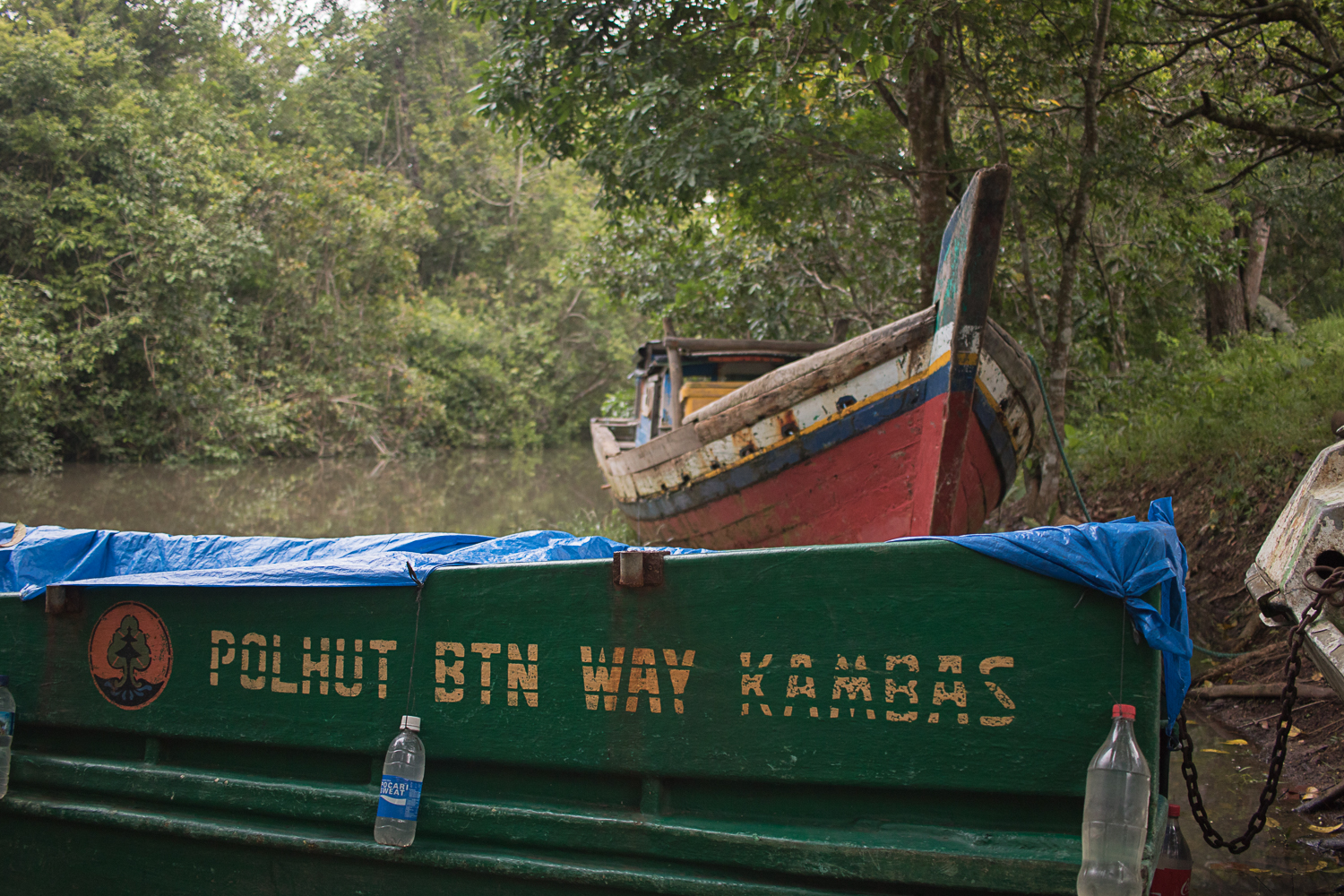 The docks at Way Kambas National Park in southern Sumatra. A gorgeous lowland jungle and a NP mostly in disrepair.