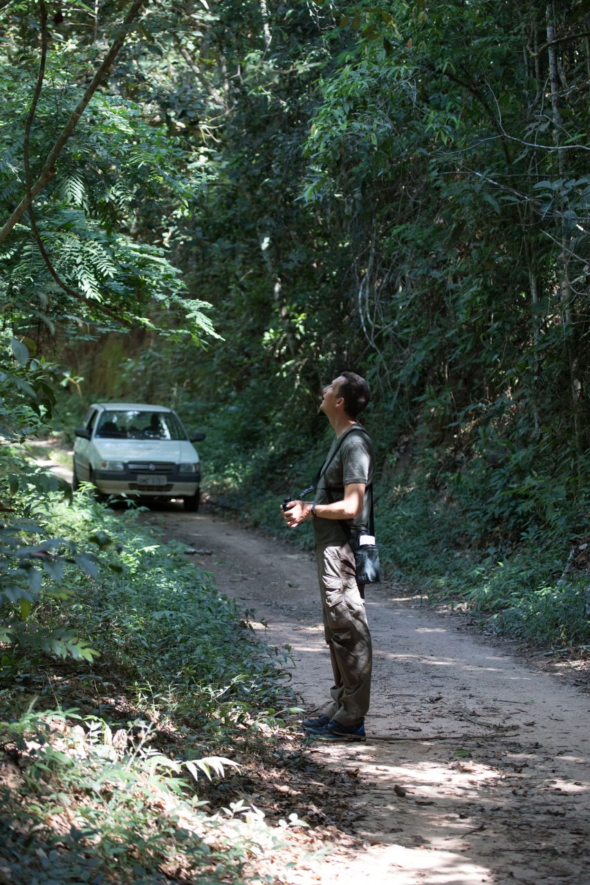 The Atlantic Rainforest of the Feliciano Abdala Biological Reserve was excellent for birdwatching.